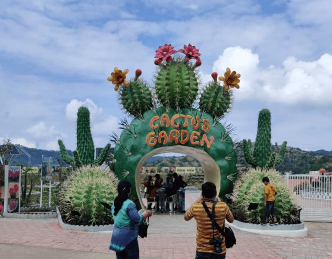 Cactus Garden Near Statue of Unity