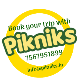 Book With Pikniks