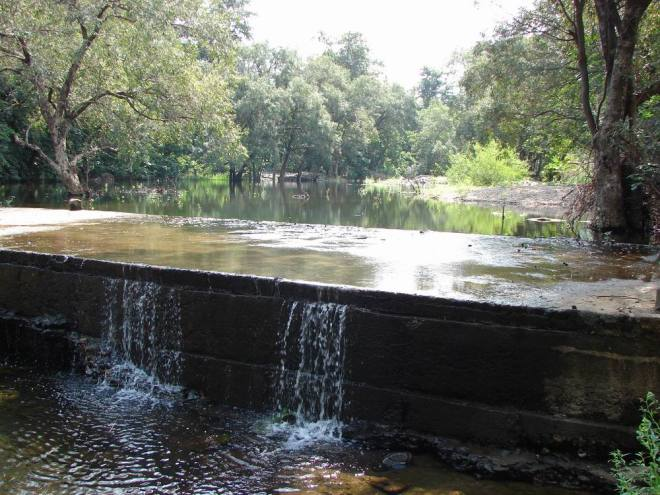Check Dam in Polo Forest