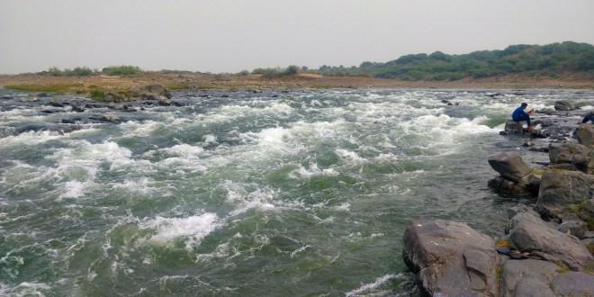 Mahi River Near Riparian resort