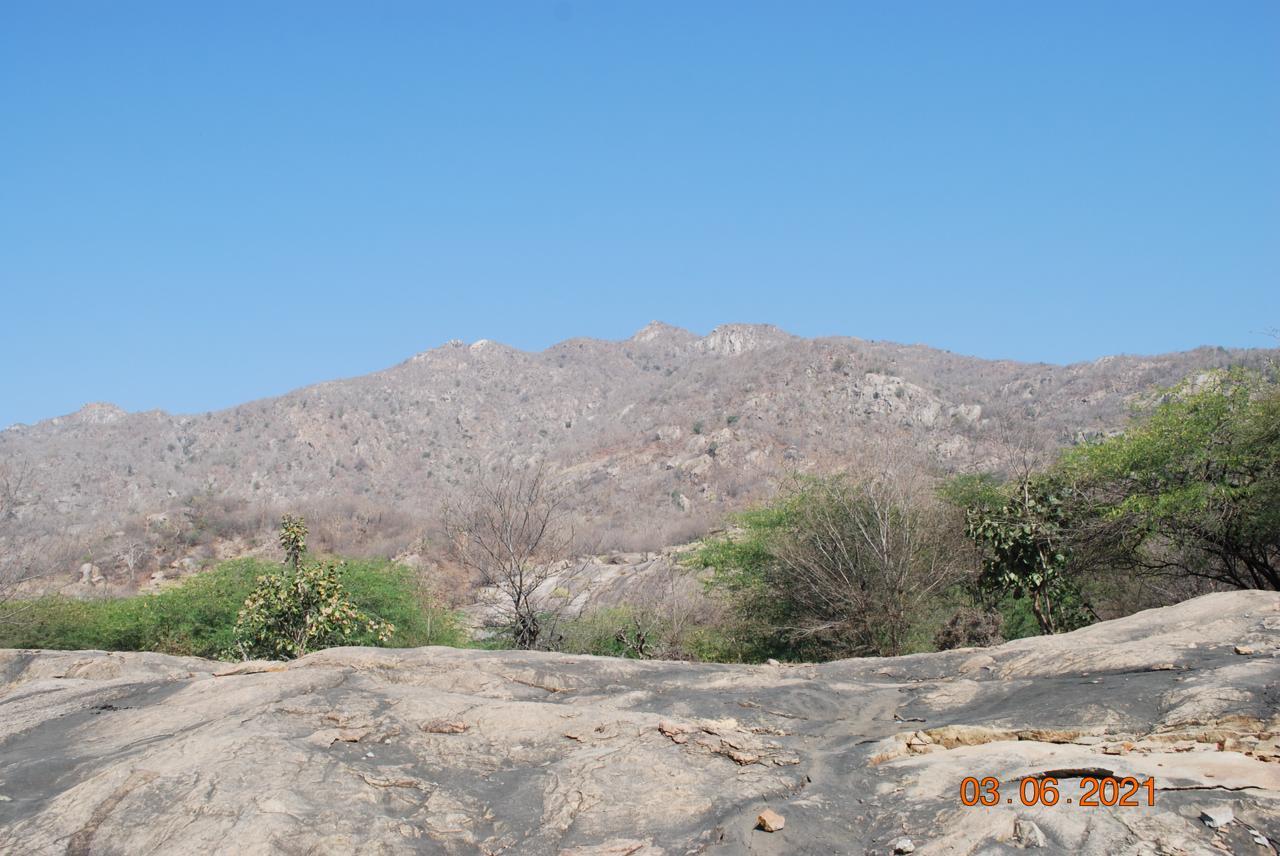Jessore Hills