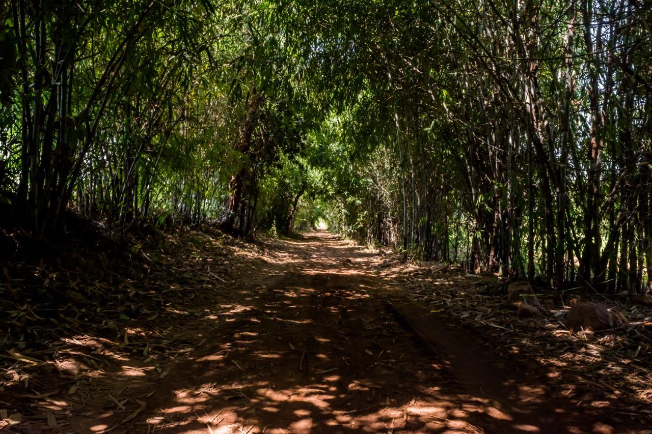 Route to Mayur Rathod Campsite Polo