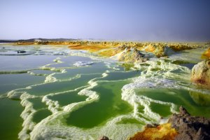 In pools of water in the Danakil Depression, the combination of heat, high acidity and sulfur concentrations causes bright yellow chimneys to form. Credit Carl Court/Getty Images