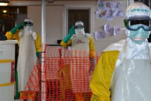 Ebola outbreak hit West Africa in 2014 - 2015