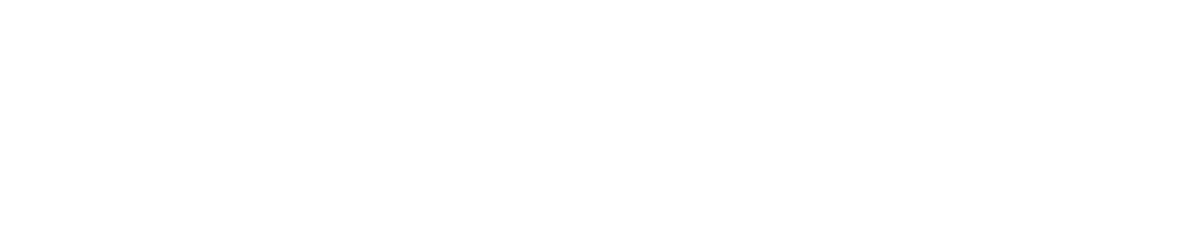 Allegiance Insurance Full 2018 White Logo