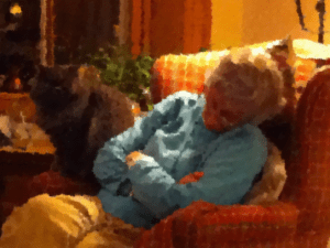 Mom napping with her cat Pia Roma beside her at her own home in January 2012