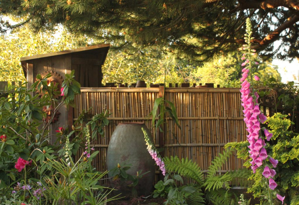 20 Amazing Bamboo Fence Ideas To Beautify Your Outdoors