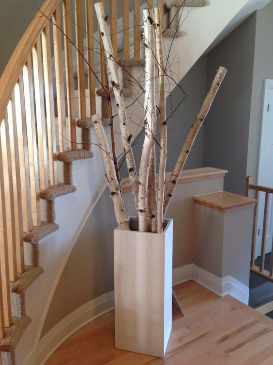 Birch Tree Decors That Will Freshen Up Yous Space