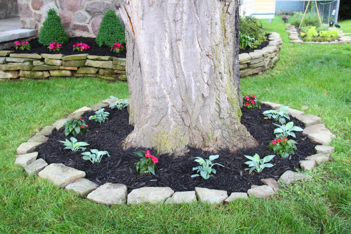 Mulch Border Ideas