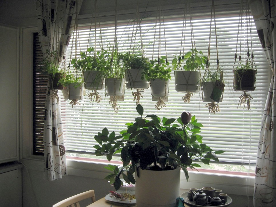 Hanging Herb Gardens You Will Love To Display In Your Home  Page 2 of 2
