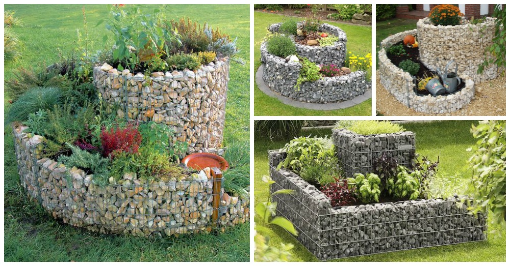 Gabion Raised Beds You Need To See
