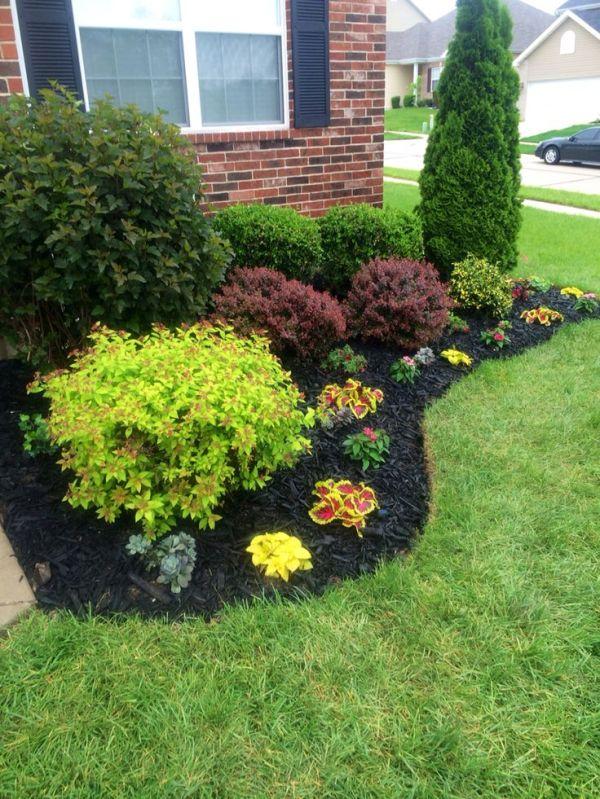 stunning black mulch landscaping