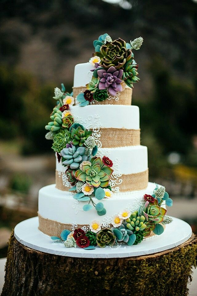 Stunning Succulent Wedding Cakes Inspired By Nature