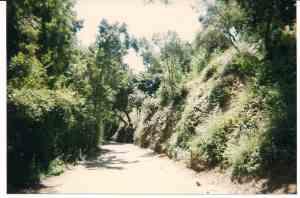 Cielo Drive in 1969