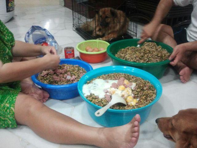Lester preparing food