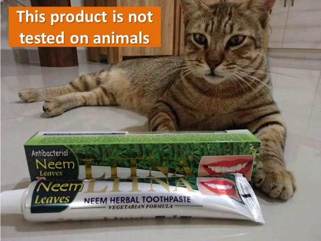 This product is not tested on animals