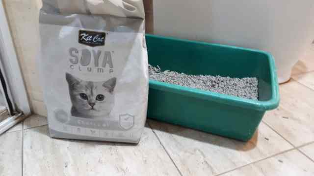 Kit Cat Soya Cat Litter (fundraising)