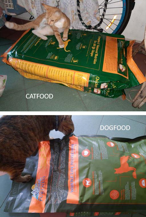 MCO-Relief Petfood Donation (Lee Jook Keng)