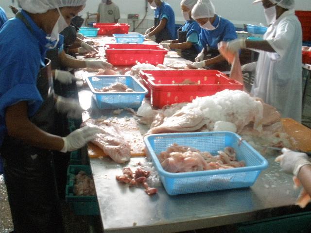 ミャンマー水産加工場
