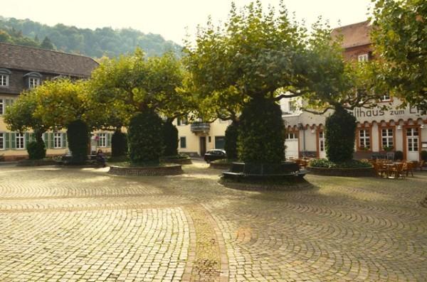 ေရာင္စံု သစ္ပင္ေလးေတြြ - ဂ်ာမဏီ ႏိုင္ငံ Heidelberg ၿမိဳ႕က ။