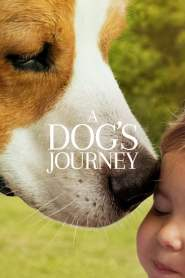 A Dog's Journey 2019 On Myanmar Tube – Myanmar Subtitle Movies – ျမန္မာစာတန္းထုိး