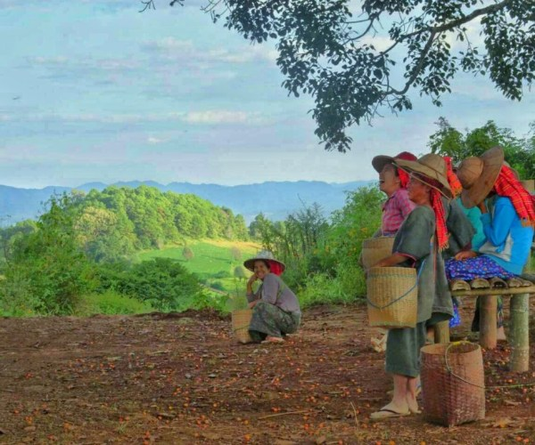 On the way of trekking from Kalaw to Inle 8