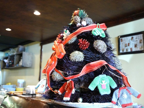 A very cute Christmas tree made from sea urchins.
