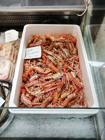 The Oyster Shed: Live langoustines