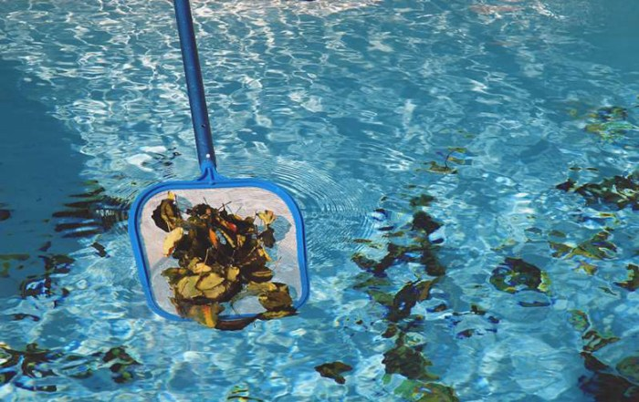 How to keep swimming pool clean