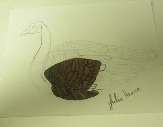 I colored in the brown feathers on my Canadian goose.