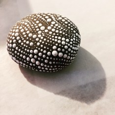 Dotted White Rock