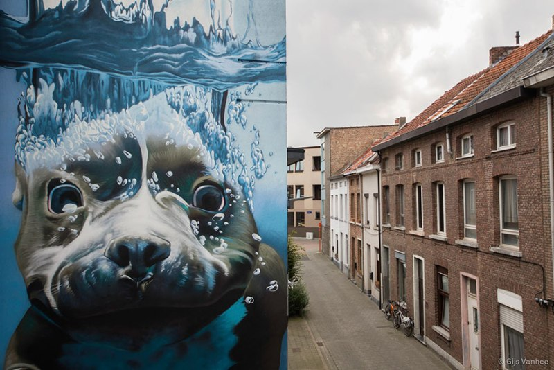 4. diving-dog-street-art-mural-smates-bart-smeets-2