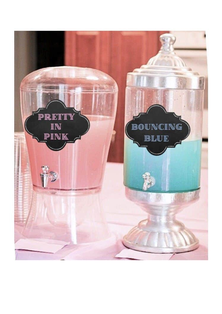 Gender Reveal Party 105