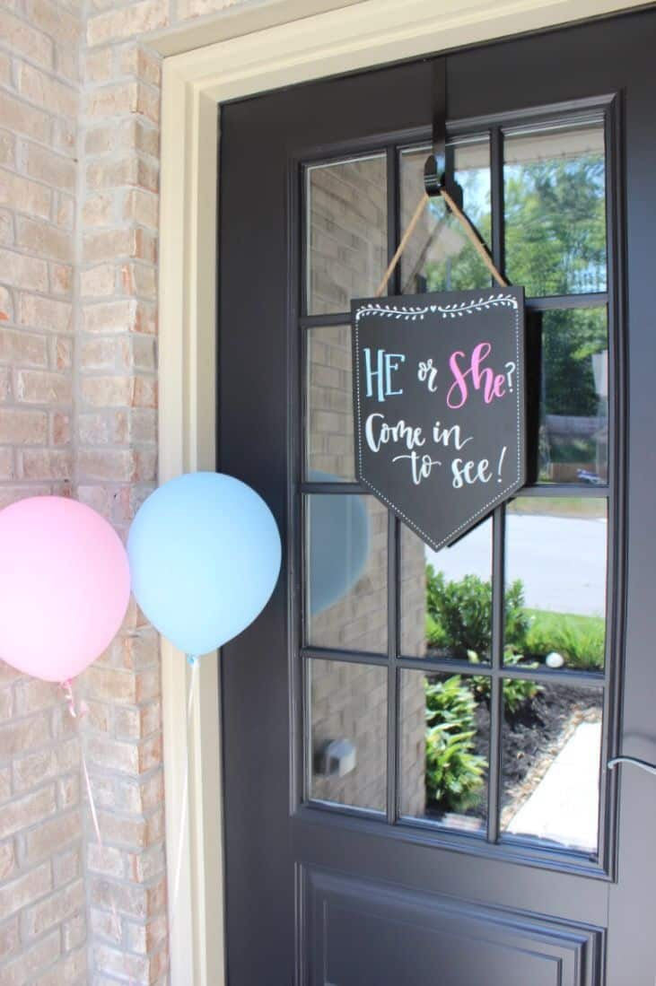 Gender Reveal Party 39
