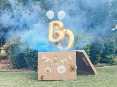 Gender Reveal Ideas 14