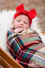Newborn Christmas Pictures 8