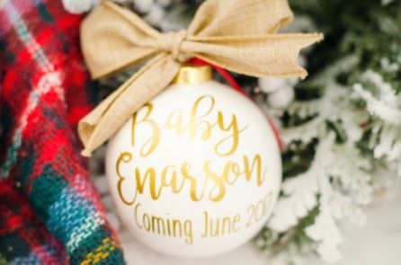 Twin Christmas Announcement 17