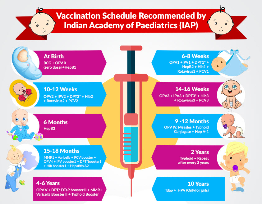 Image showing vaccination schedule at different ages baby also iap recommended in india  mamma  rh mammazbaby