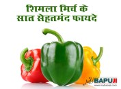 शिमला मिर्च(Peppers) के सात सेहतमंद फायदे