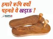 हमारे ऋषि क्यों पहनते थे खड़ाऊ ? Sages-why wore Khadau?