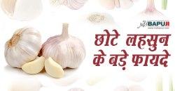 कुछ नुस्खे: छोटे लहसुन के 13 बड़े फायदे | Surprising Health Benefits Of Garlic