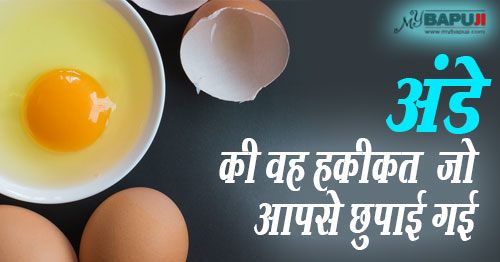 अंडे(eggs) ,अंडा(egg)229--You-Will-Never-Eat-Eggs-Again-After-Reading-This