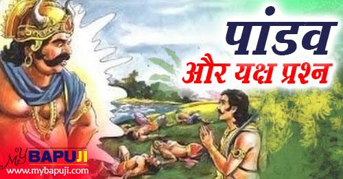 Mahabharata , Yudhishthira , यक्ष प्रश्न (Questions of Yaksha),Pandavas