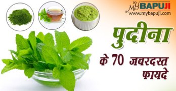 pudina benefits in hindi