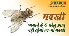 मक्खी भगाने के 8 घरेलु उपाय |नही रहेगी एक भी मक्खी | Makkhi Bhagane ke Upay