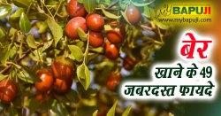 बेर खाने के 49 जबरदस्त फायदे | Ber Khane ke Fayde in Hindi