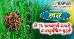 खस के 26 चमत्कारी फायदे व आयुर्वेदिक नुस्खे   Khas Grass Benefits