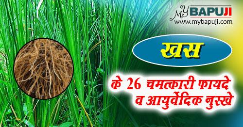 khas grass ke fayde Benefits and Uses in Hindi