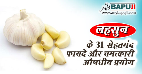 lahsun ke fayde aur nuksan in hindi