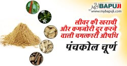 पंचकोल चूर्ण के फायदे गुण उपयोग और नुकसान | Panchkol Churna Dosage, Ingredients,Benefits and Side Effects in Hindi